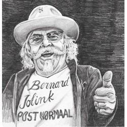 Post Normaal